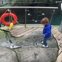 Great activity for toddlers in Montreal - Biodome Montreal