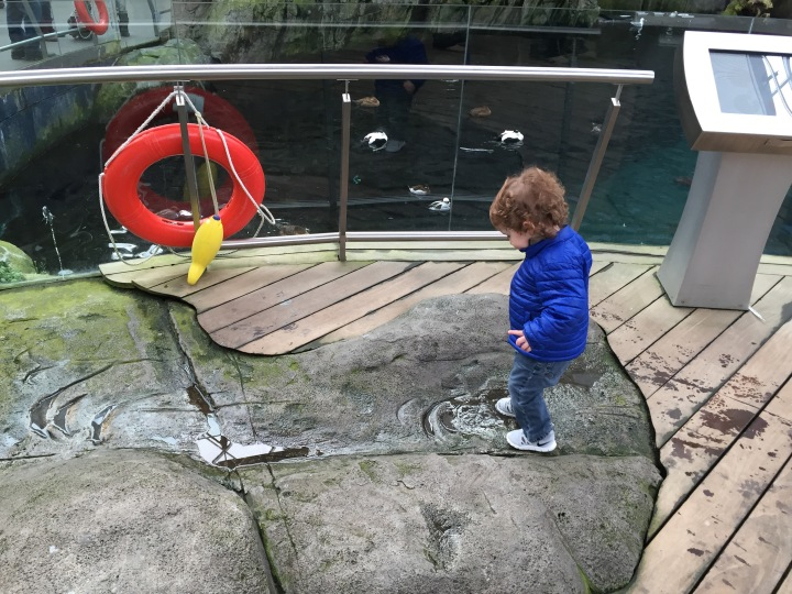 Great activity for toddlers in Montreal – Biodome Montreal