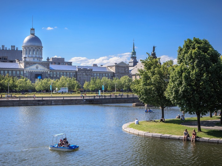 Pedal Boat Rentals in OldMontreal