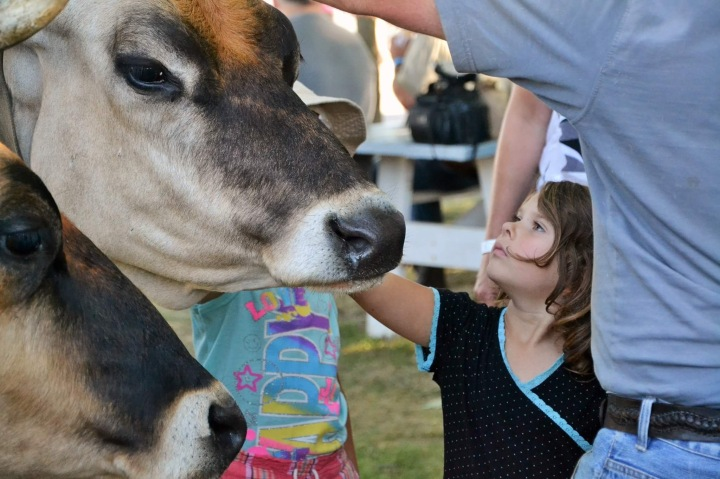 The 161st Annual Brome Fair is This Weekend!