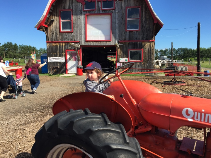 Fall Festival and Apple Picking inMontreal